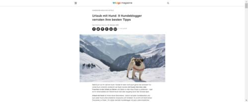 trivago Magazin: Hundeblogger-Kooperation