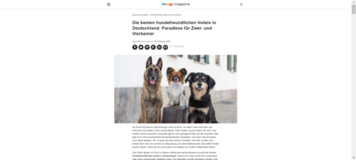 trivago Magazin: Hundefreundliche Hotels DE